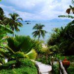 Tropikalne wyjazdy